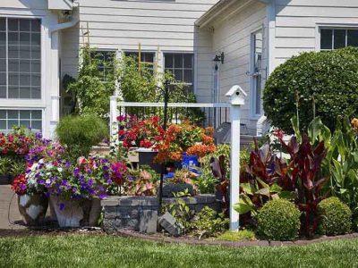 garden_maintenance_lawn_mowing_western_sydney_near_me_cheap (2)
