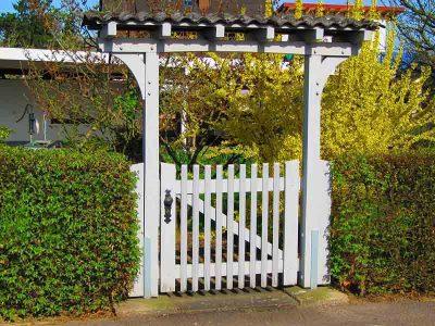 garden_maintenance_lawn_mowing_western_sydney_near_me_cheap (3)