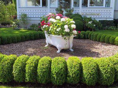 garden_maintenance_lawn_mowing_western_sydney_near_me_cheap (4)