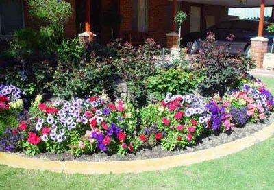 lawn_mowing_garden_care_ezy_near_me_western_sydney